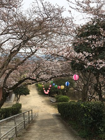 Shikokuchuo, Japan: photo2.jpg