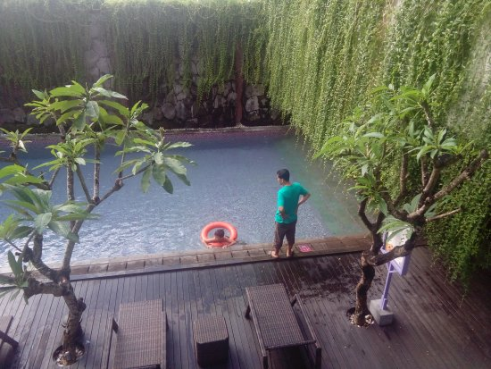 Berry Hotel: IMG_20170403_074102_large.jpg