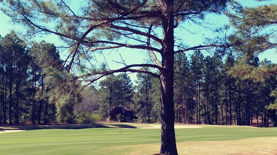 Aberdeen, Carolina del Norte: Legacy Golf Links
