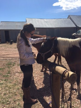 Livermore, CO: I went horseback riding!!