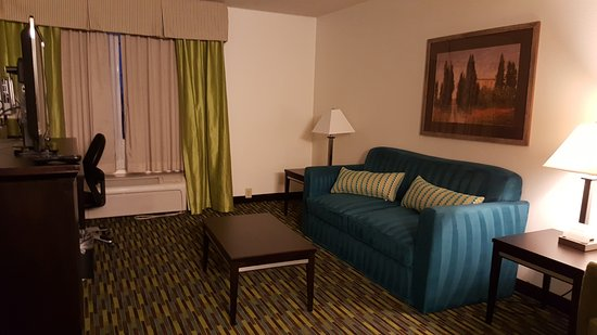 Wyndham Garden Wichita Downtown: A solid print couch that has been very well vacuumed!