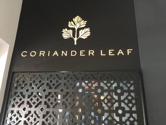 Coriander Leaf: photo0.jpg