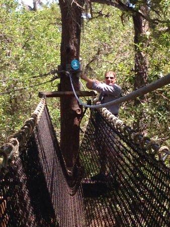 TreeUmph! Adventure Course: photo1.jpg
