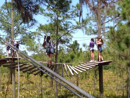TreeUmph! Adventure Course: photo2.jpg