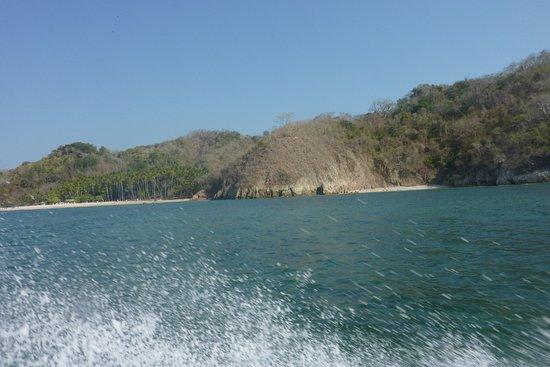 Cocozuma Traveller Day Tours: isla tortuga
