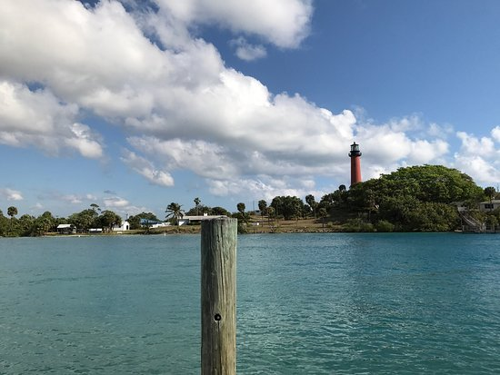 Manatee Boat Tours Jupiter Florida