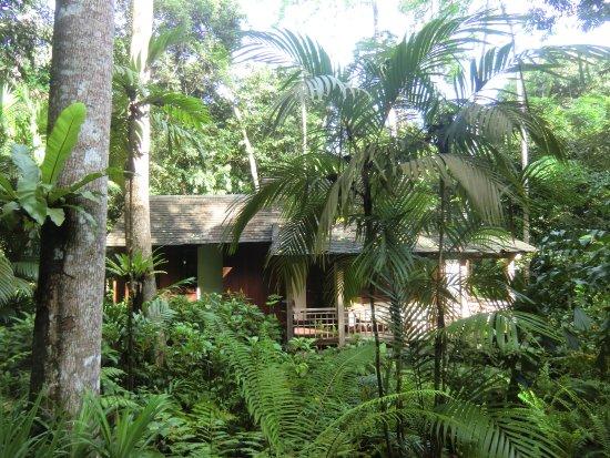 The Datai Langkawi: Rainforest Villa