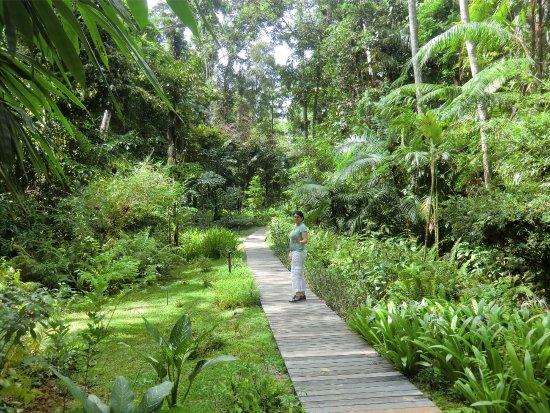 The Datai Langkawi: Way to the beautiful beach