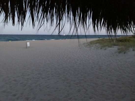 Nice little piece of paradise 🌴