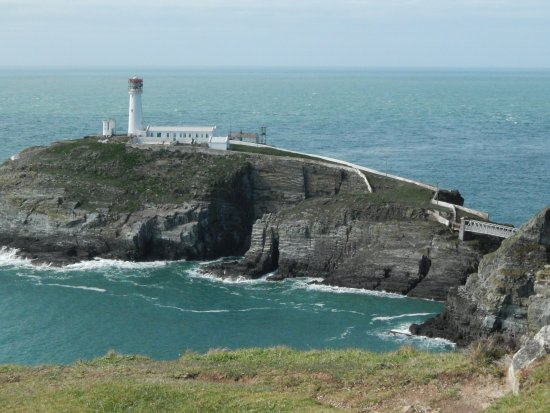 South Stack Cliffs RSPB Reserve: The view of Southstack lighthouse from the reserve
