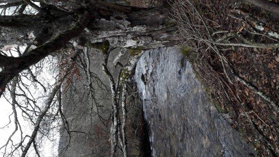 Montejo de la Sierra, Espanha: IMG-20170326-WA0015_large.jpg