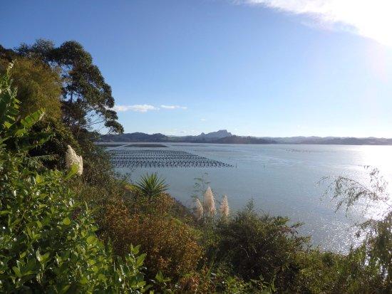 Foto de Whangaroa