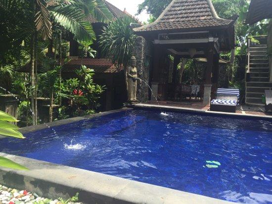 Dewangga Bungalow: The pool