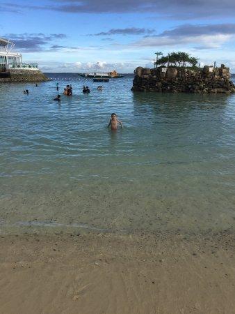 Ibiza Beach Club: photo2.jpg