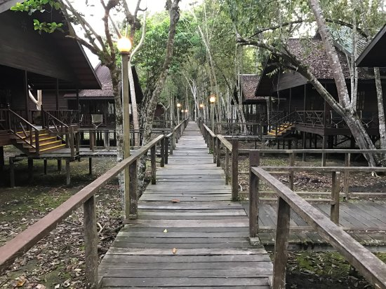 Bilit Rainforest Lodge: photo1.jpg