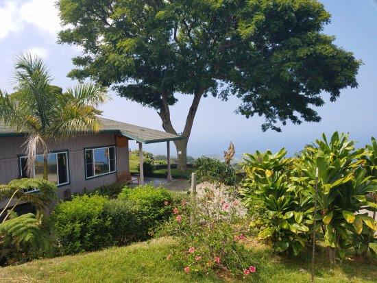 Kealakekua, هاواي: Kona Joe's