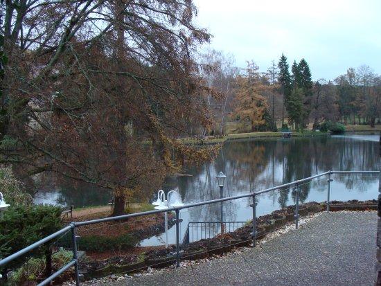 Bad Elster, Germania: Blick von der Terresse zum Gondelteich