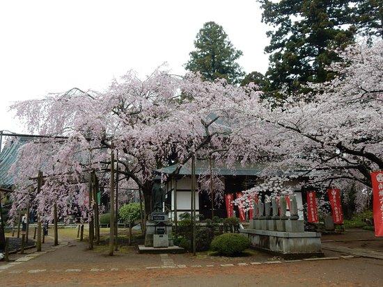 Rokujizo temple