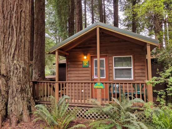 Emerald Forest Cabins Amp Rv 29 ̶1̶2̶9̶ Updated 2018