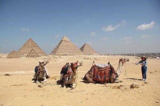 Real Egypt Day Tours Photo