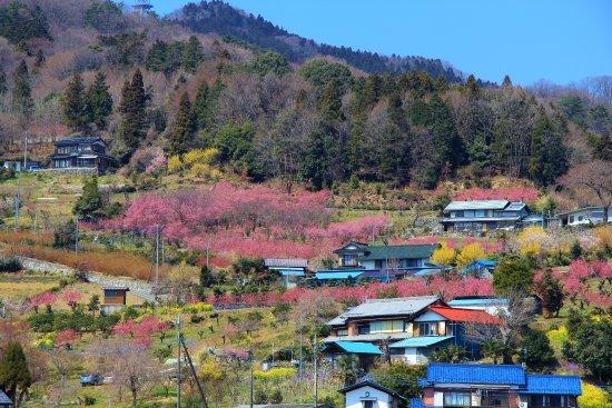 Ouchizawa Hanamomonosato