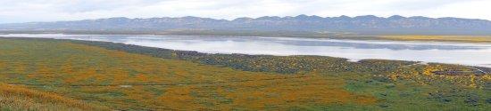 Maricopa, كاليفورنيا: Soda Lake Overlook