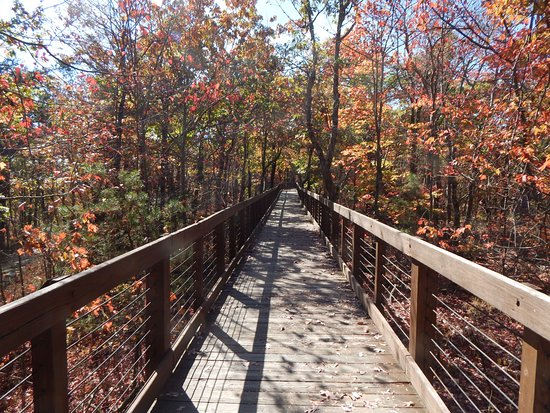 Delta, AL: The wooden walkway to Bald Rock is beautiful