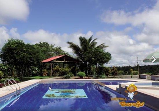 Pedro Vicente Maldonado, Ecuador: Area de la Piscina Hostal El Borojo