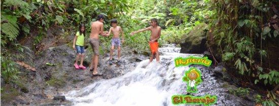 Pedro Vicente Maldonado, Ecuador: Cascadas y rios