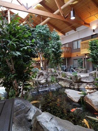Billings C'mon Inn Hotel: 20170314_085541_large.jpg