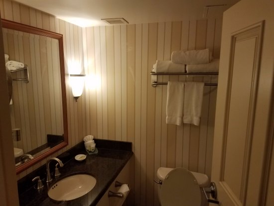 Hollywood Casino St. Louis Hotel: Bathroom