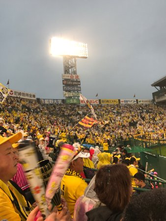 Hanshin Koshien Stadium: photo3.jpg