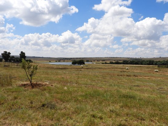 Bethlehem, Sydafrika: View to the Countryside in the area of Lions Rock