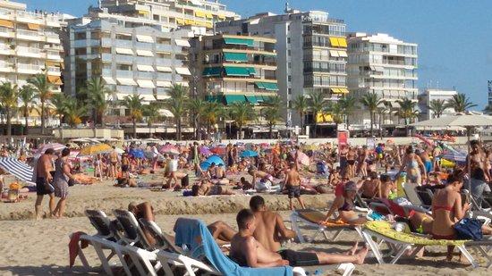 Ponent Beach: En Haute saison !!!!!