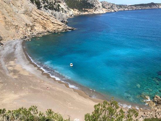 photo0.jpg - Picture of Playa Coll Baix, Alcudia - TripAdvisor