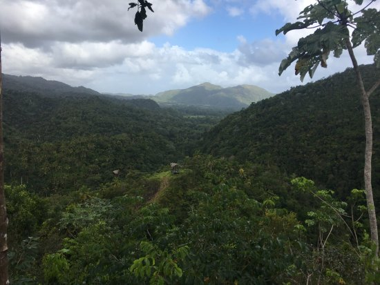 Santa Barbara de Samana, Dominikanska Republiken: View from the first zipline