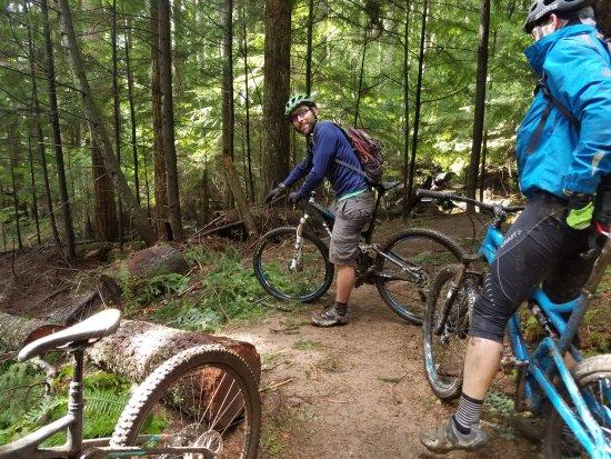 Seattle Mountain Bike Tours