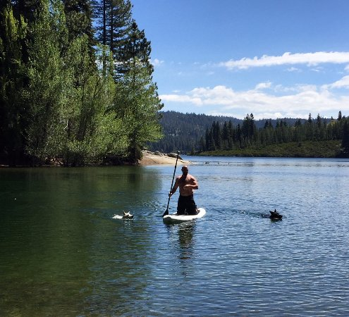 Pollock Pines, Califórnia: Paddle Board Rentals
