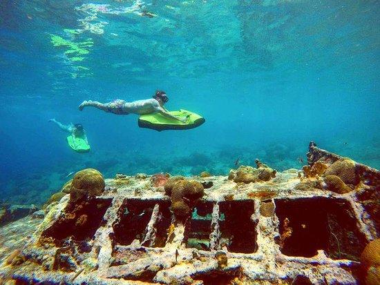 SeaBob Curacao
