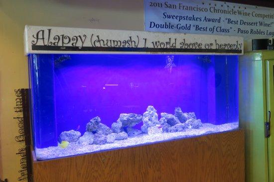 Avila Beach, Kalifornien: Aquarium with Chumash saying