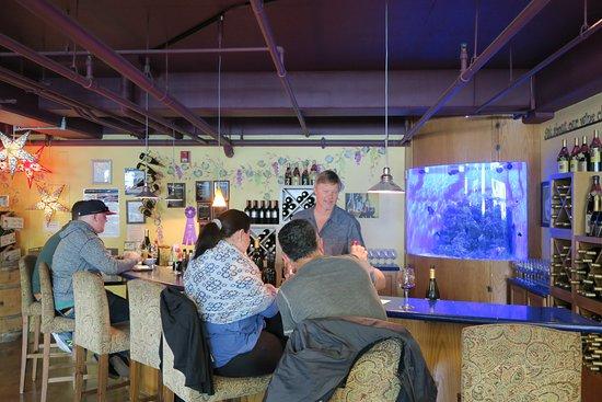 Avila Beach, Kalifornien: Main wine bar and aquarium; Scott is the winemaker pouring