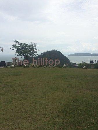 The Hilltop: photo1.jpg