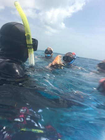 Two D's Diving and Tour Adventures: photo1.jpg