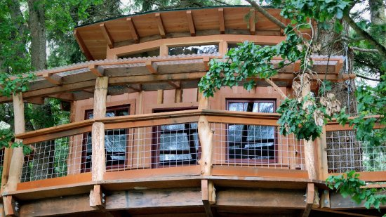 Olga, WA: Stay in our TreeHouse!