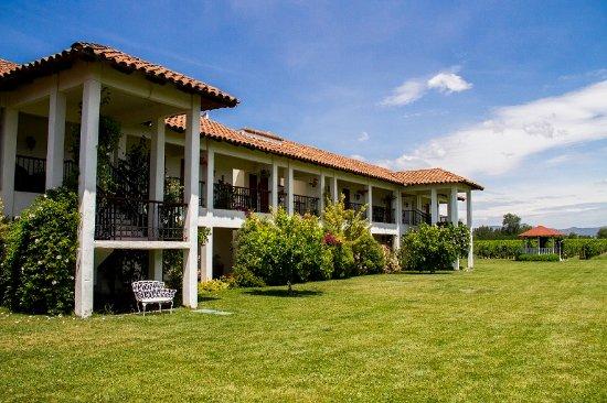 Hotel TerraVina: Backyard