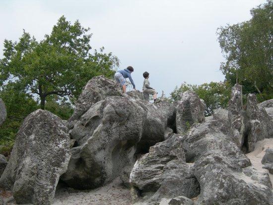 Fere-en-Tardenois, France: Les grès géants sur lesquels les enfants adorent grimper.