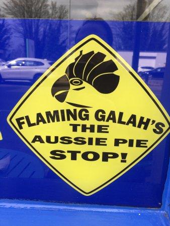 Flaming Galah: photo0.jpg