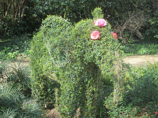Chiswick House: Green elephant by greenhouse