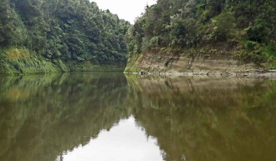 Pipiriki, New Zealand: Wonderful reflections on the placid stretches of the river.