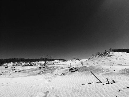 Warren Dunes State Park: photo1.jpg